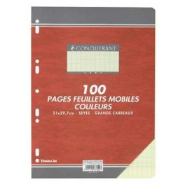 FEUILLETS MOBILES 21X29.7 SEYES 80G JAUNE 100 P