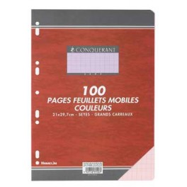 FEUILLETS MOBILES 21X29.7 SEYES 80G ROSE 100 P