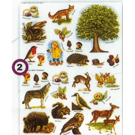 GOMMETTES ANIMAUX FORET 324 gommettes 12 Fs