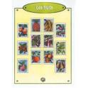 IMAGES LES FRUITS - BOÎTE DE 100